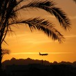 Royalty-Free Stock Photo: Plane and palma silhouettes