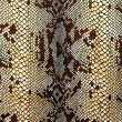 Fabric patterned snakeskin — Stock Photo