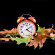 Clock and leaves — Stockfoto