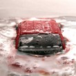 The frozen car — Stock Photo