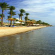 Постер, плакат: Red Sea coast Sinai Egypt
