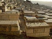 Cmentarz żydowski — Zdjęcie stockowe