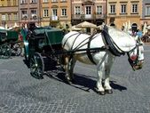 Carriage in Warsaw Old Town, Poland — Stock Photo