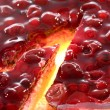 Cherry and cranberry cake. - Stock Photo
