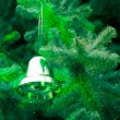 Decoration of the fir tree — Stock Photo