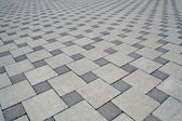 Paving slab — Stock Photo