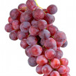 Stock Photo: Grape cluster