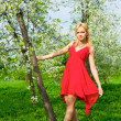 Young beautiful woman in a red dress - Stock Photo