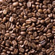 Coffe beans — Photo