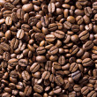 Coffe beans — Foto de stock #1998576