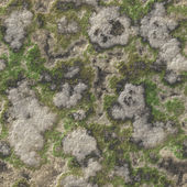 Rock seamless texture — Stock Photo
