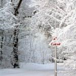 Kış ülkede yol — Stok fotoğraf
