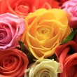 Rose bouquet — Stock Photo #1696872