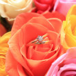 Wedding set in a rose — Stock Photo