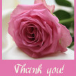 Pink rose card - Thank you — Stock Photo