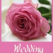 Pink rose card -  wedding - - 图库照片