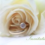 White rose bridal set invitation — Stock Photo #1697380