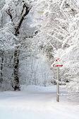 Země silnice v zimě — Stockfoto