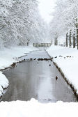 Frozen ditch in a park — Stock Photo