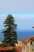 La Orotava Tenerife — Fotografia Stock