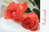 Orange rose card - print and post - bridesmaid — Stock Photo