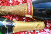 Two bottles of champagne — Stock Photo