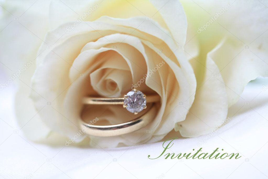 White rose card with wedding bands for a wedding invitation — Stock Photo #1697380