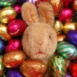 Easter egg bunny — Stock Photo