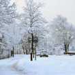 Stock Photo: Cars on winter road