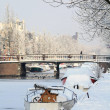 Stock Photo: Snow in city