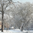 Snow in the city — Stock Photo #1713903