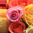 Valentine rose greeting card — Foto de Stock