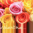 Valentine rose greeting card — Stock Photo