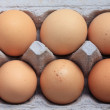 Eggs in a carton box — Stock Photo