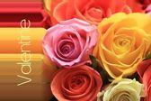 Valentine rose greeting card — Stock Photo