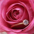 Diamond engagement ring in a wet rose — Stock Photo