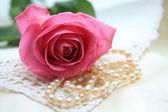 Rosa ros på pärlor och spets — Stockfoto