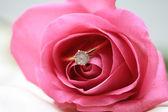 Anillo de compromiso de diamante en una rosa rosa — Foto de Stock