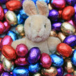 Easter bunny in chocolate eggs — Stock Photo