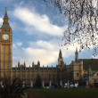 Torre do Big ben — Foto Stock