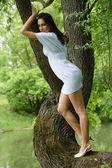 Mujeres jóvenes en árbol — Foto de Stock