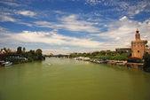 River Guadalquivir in Seville, Spain. — Stock Photo
