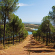 Spanish landscape — Stock Photo