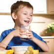 Little boy loves milk — Stock Photo #1723813