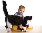 Child with big cat — Stock Photo