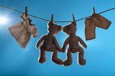 Two teddy bears on a cord — Fotografia Stock