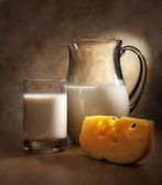 Milk and cheese — Stock Photo