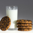 Cookies with milk — Stock Photo #1744386