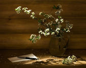 Still-life with cherry branch — Stock Photo