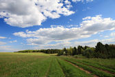 Idyllic spring landscape — Stock Photo